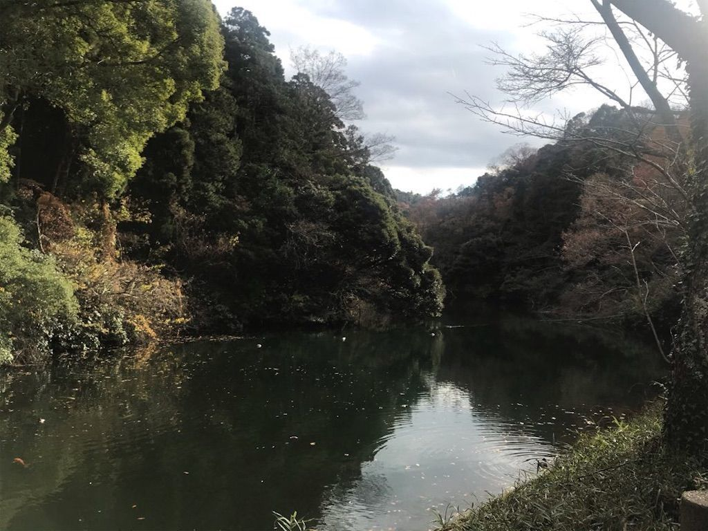f:id:k_k_azuki:20201220195031j:image