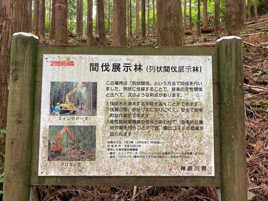 f:id:k_k_azuki:20210512103902j:image