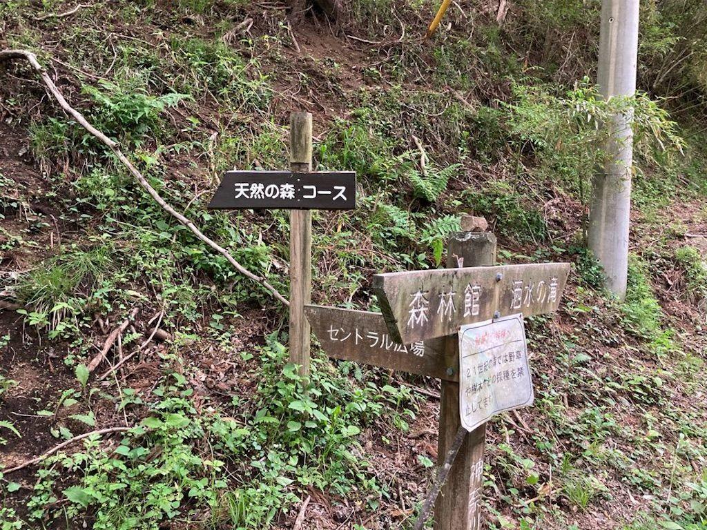 f:id:k_k_azuki:20210512103948j:image