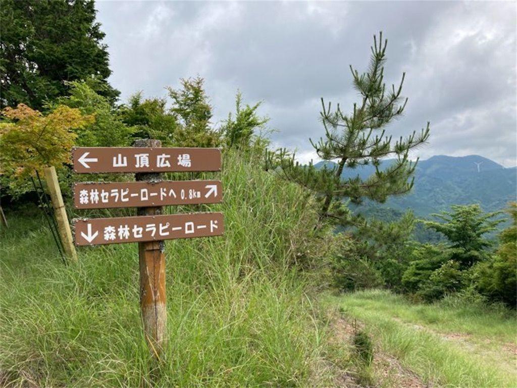 f:id:k_k_azuki:20210614154346j:plain