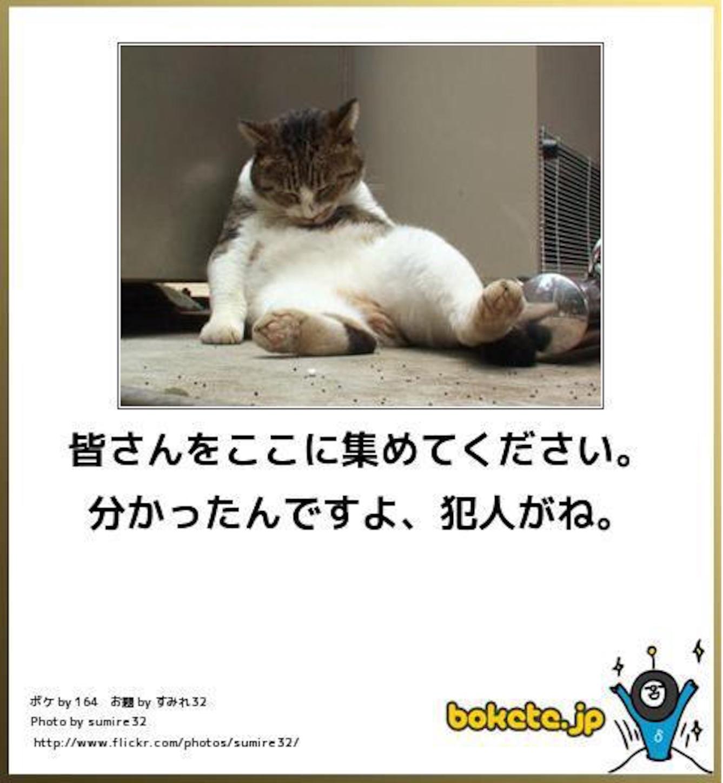 f:id:k_nali:20160611200941j:image