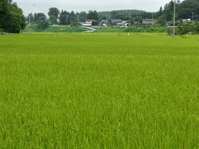 f:id:k_nobukiyo:20110821162054j:image