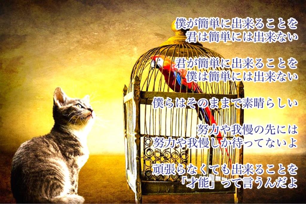 f:id:k_riho:20170329075810j:image