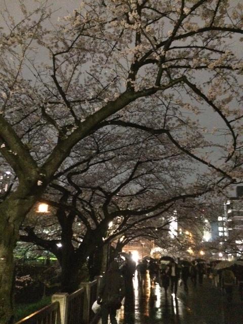 f:id:k_sakashita:20160401213415j:plain
