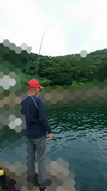 f:id:k_u_r_a_g_e_n:20180624173746j:image