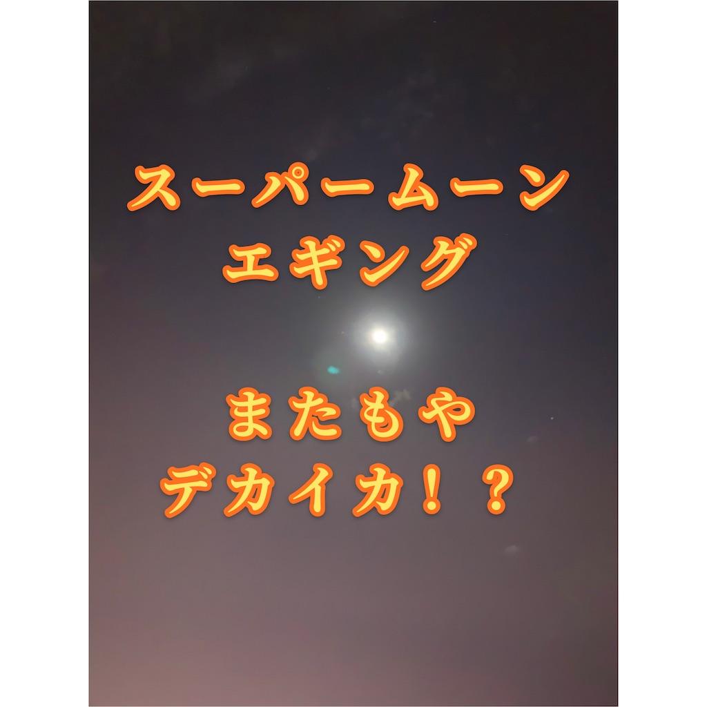 f:id:k_u_r_a_g_e_n:20210203081437j:image
