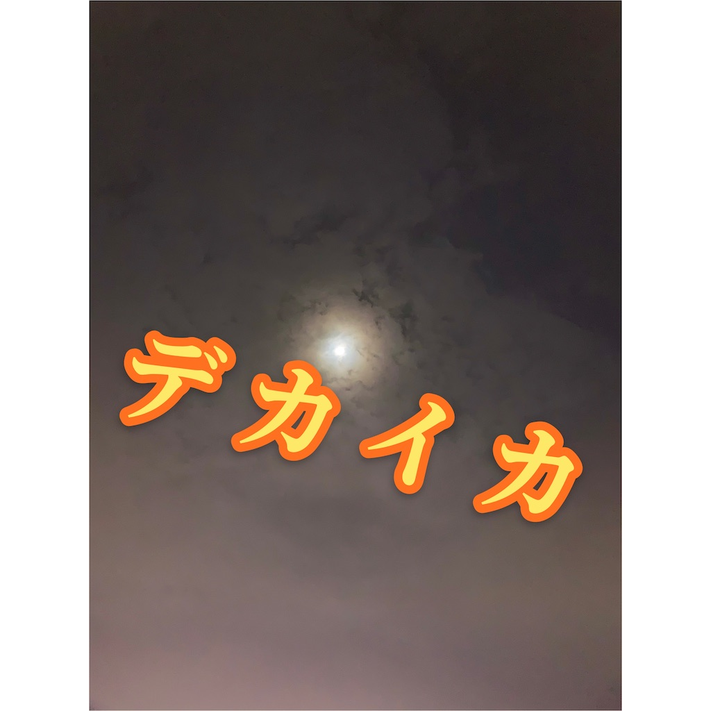 f:id:k_u_r_a_g_e_n:20210203155953j:image