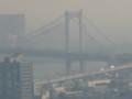 [東京][東京タワー]展望台からレインボーブリッジ
