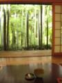 [嵐山][大河内山荘]