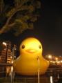 [水都大阪2012]