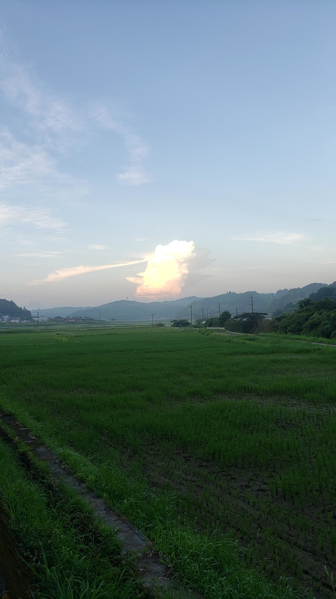 f:id:k_ushiyama:20190730054855j:plain