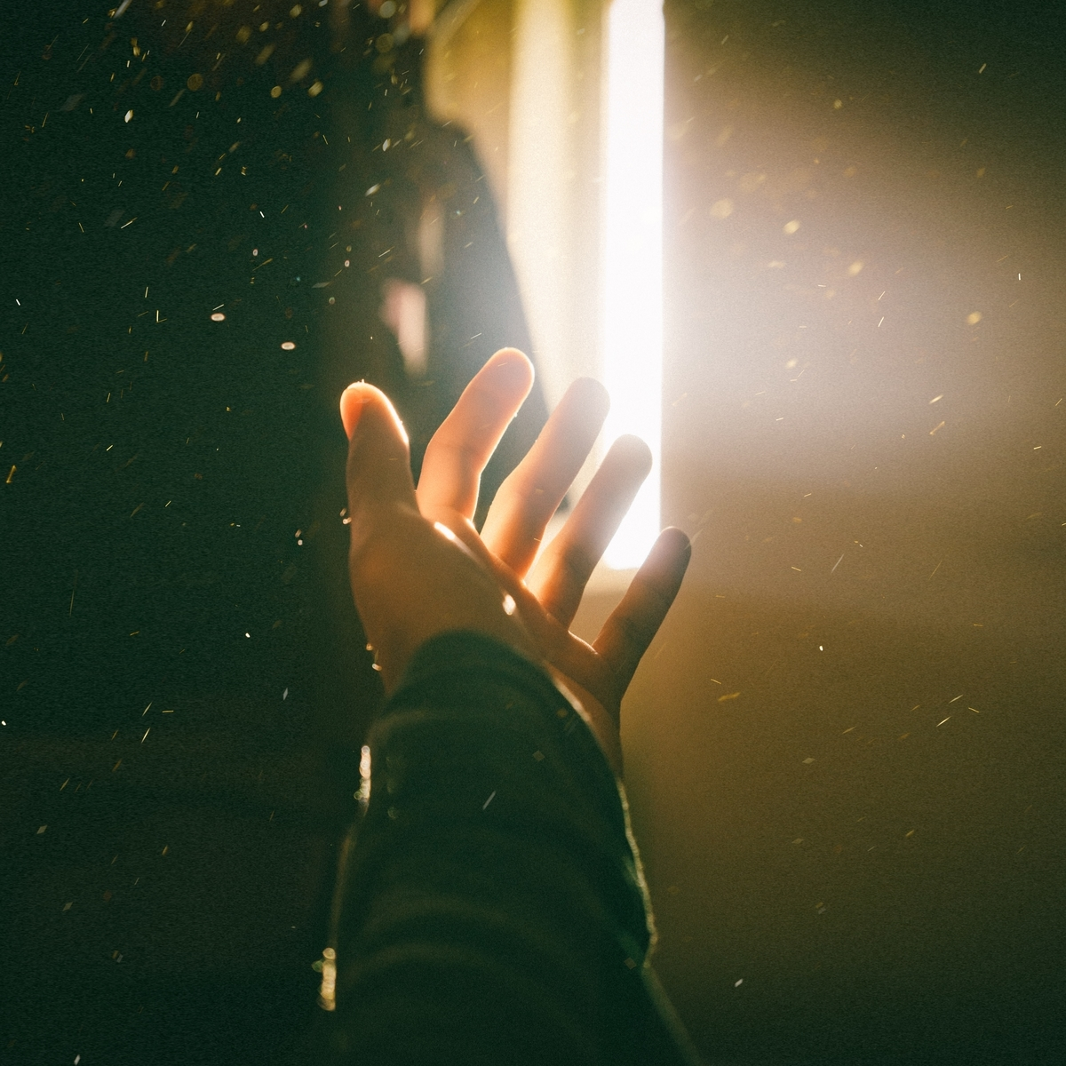 """<img src=""""ray.jpg"""" alt=""""今でもあなたは私の光"""">"""