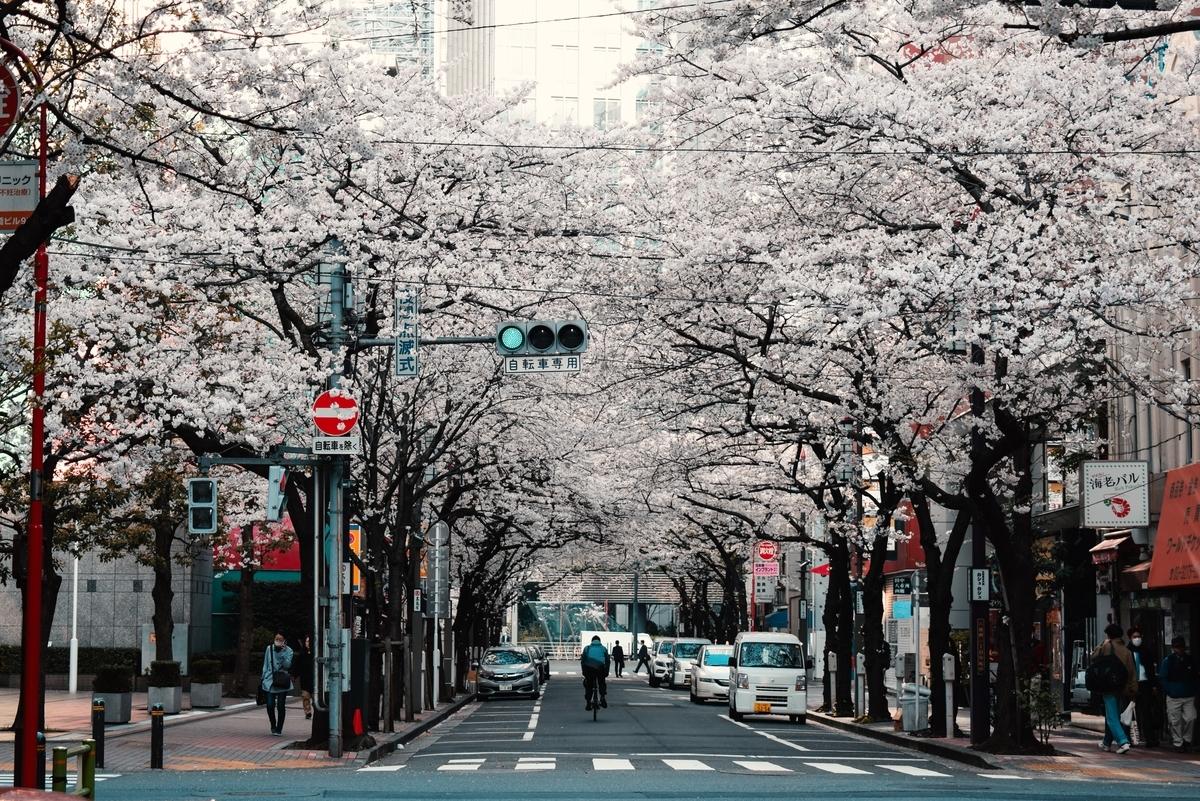 """<img src=""""cherryblossme.jpg"""" alt=""""桜が満開"""">"""