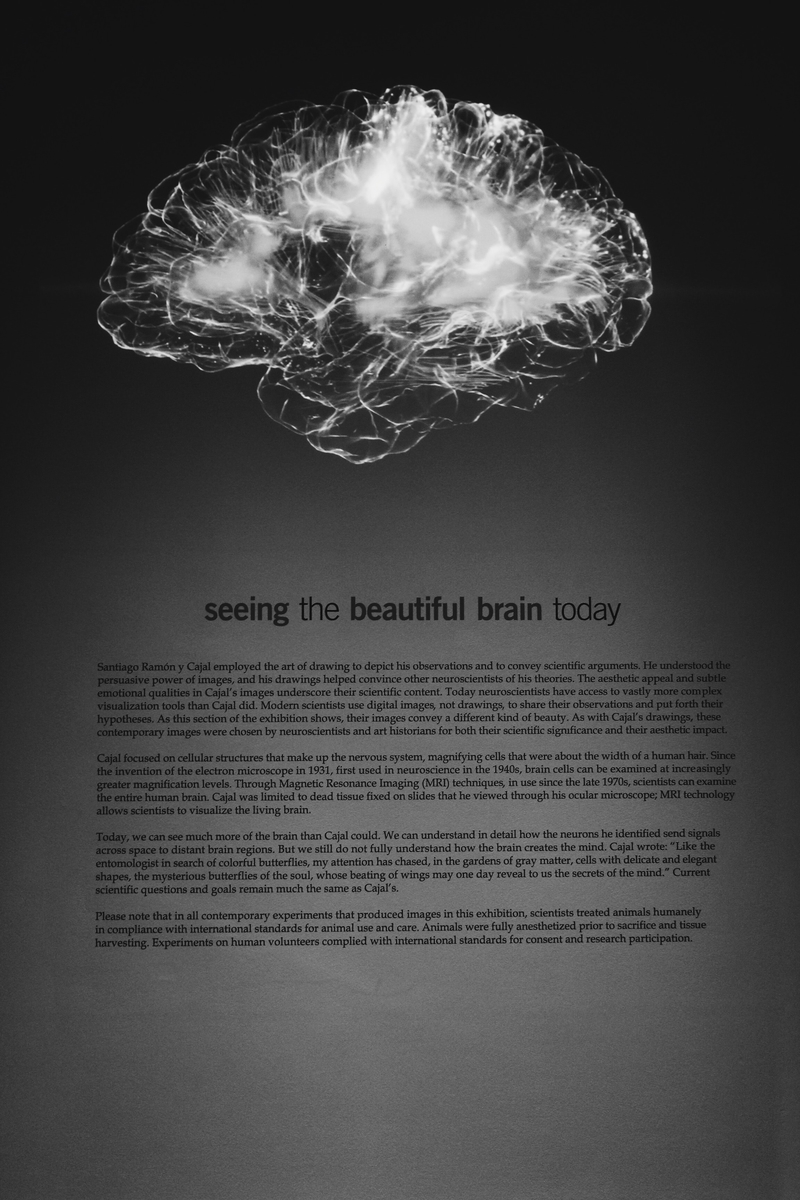 "<img src=""brainwash.jpg"" alt=""洗脳"">"