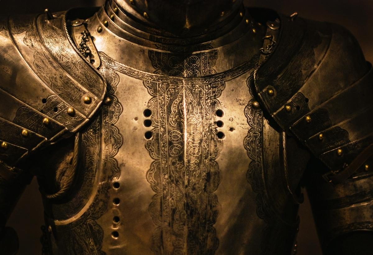 """<img src=""""armour.jpg"""" alt=""""痛いのは嫌なので防御力を上げる"""">"""