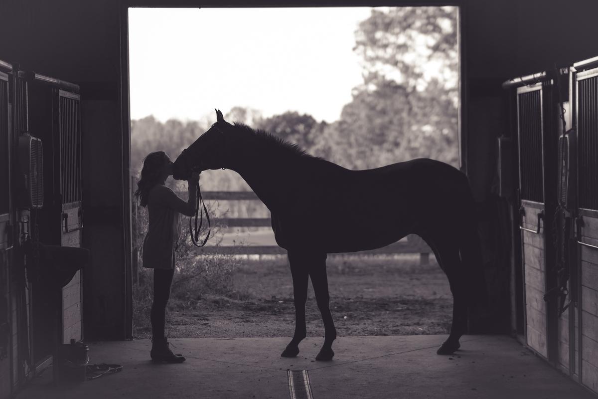 """<img src=""""horse.jpg"""" alt=""""ウマと娘"""">"""