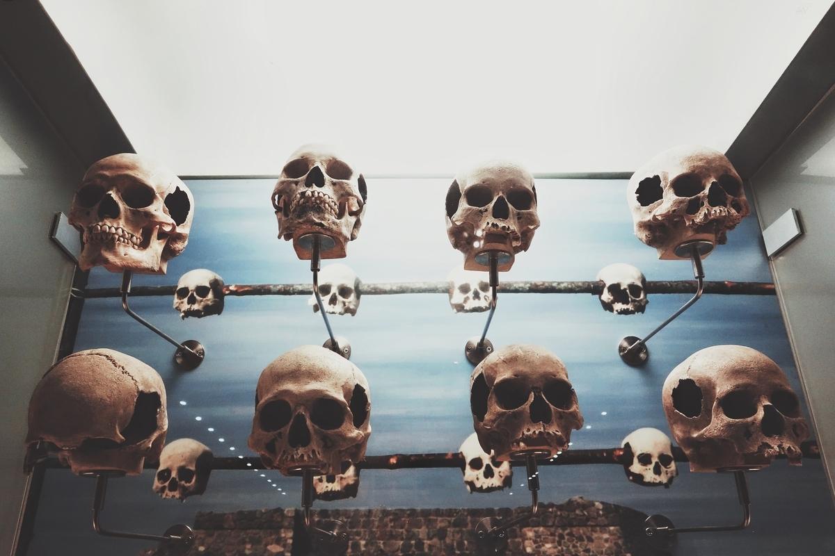 "<img src=""bones.jpg"" alt=""頭蓋骨"">"