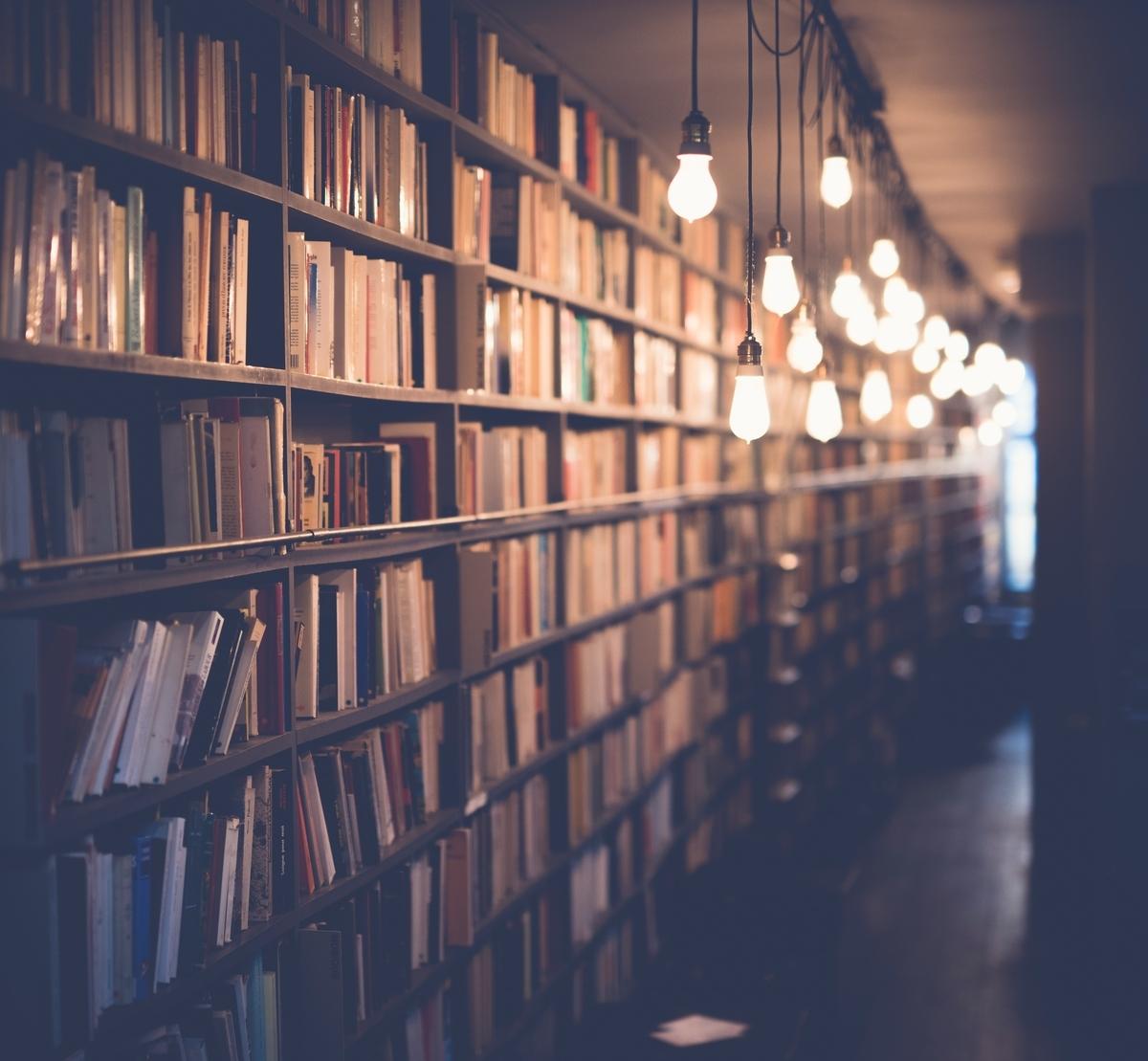 """<img src=""""books.jpg"""" alt=""""文豪のような本棚"""">"""