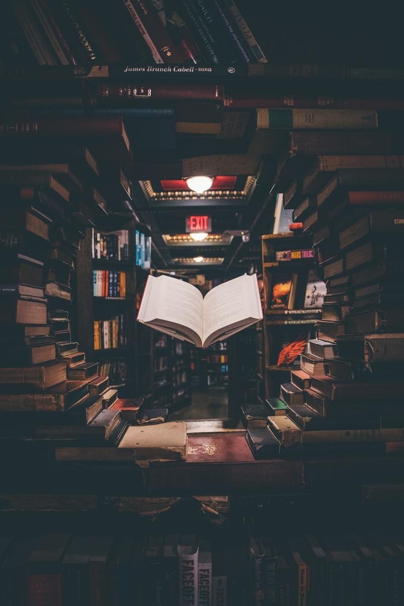 "<img src=""books.jpg"" alt=""文豪の異能力"">"