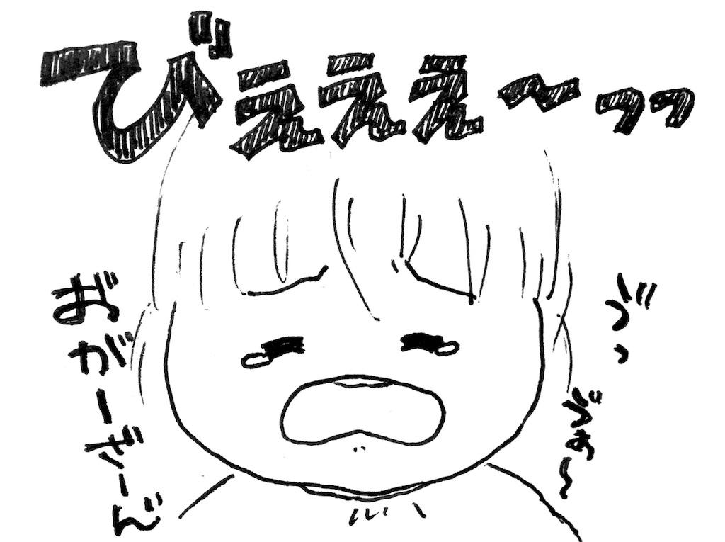 f:id:ka--chan:20170125223206j:image