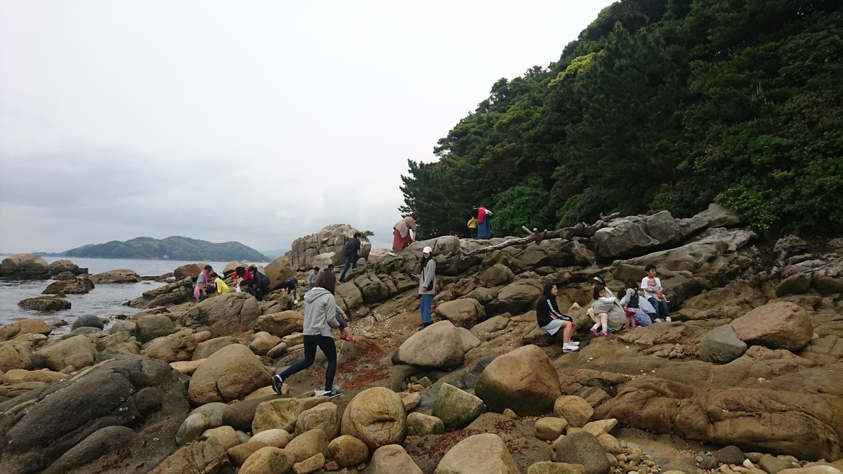 f:id:kab-log:20190501140035j:plain