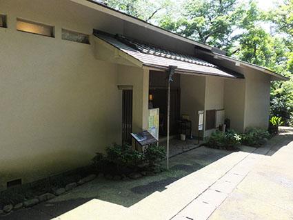 f:id:kabakabatamanegi:20160620134927j:plain