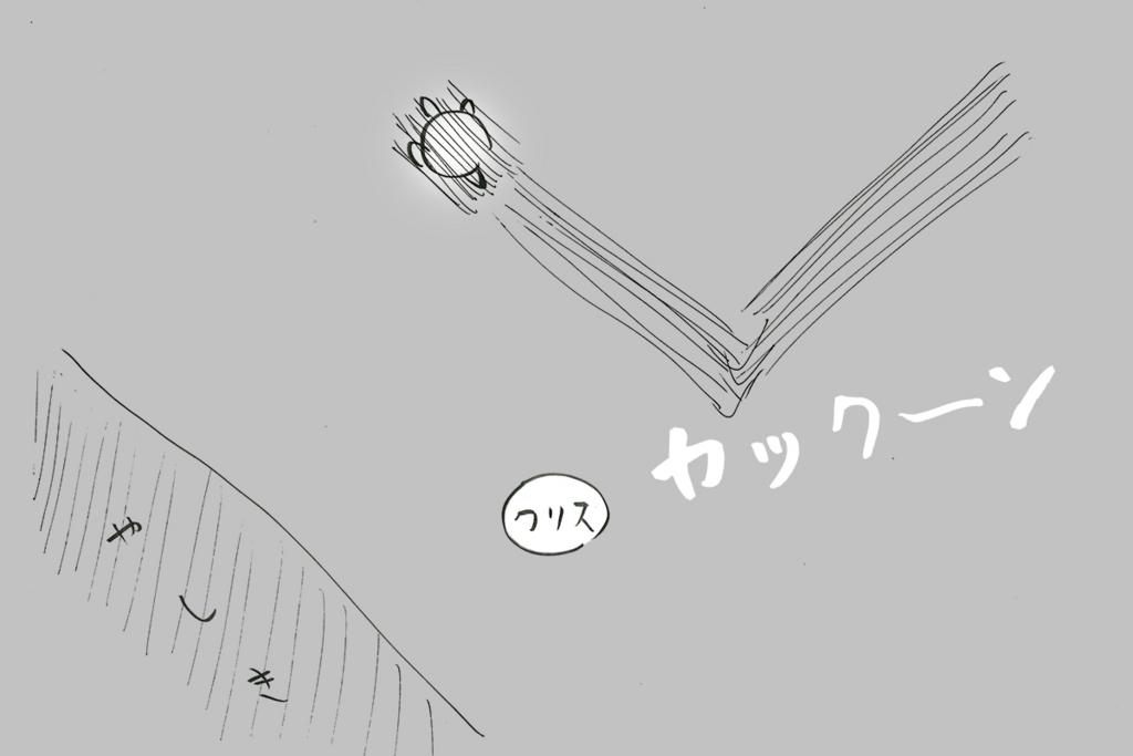 f:id:kabo123:20171106210948j:plain