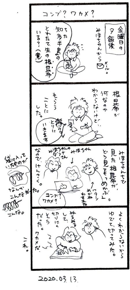 f:id:kabosu_onpu:20200317041632j:plain