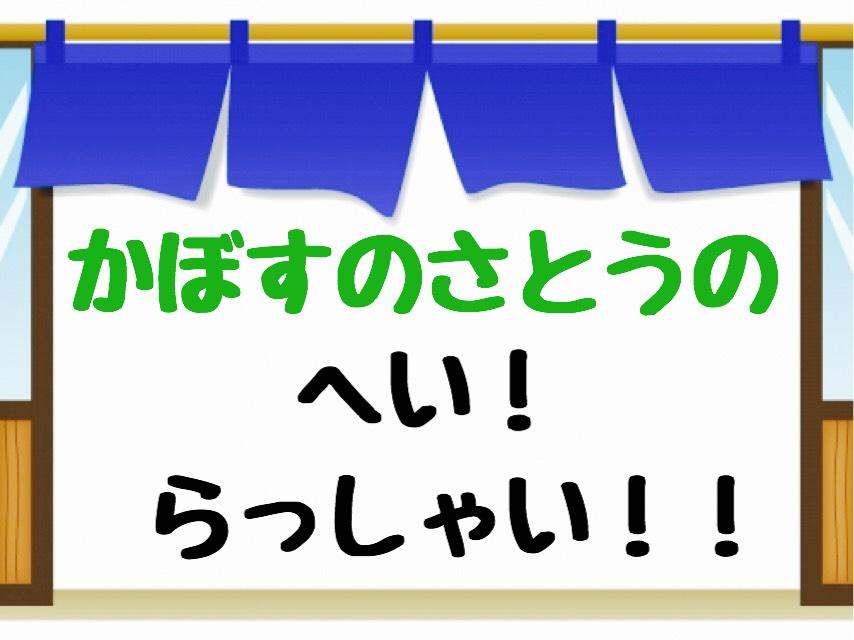 f:id:kabosunosato:20190225183436j:plain