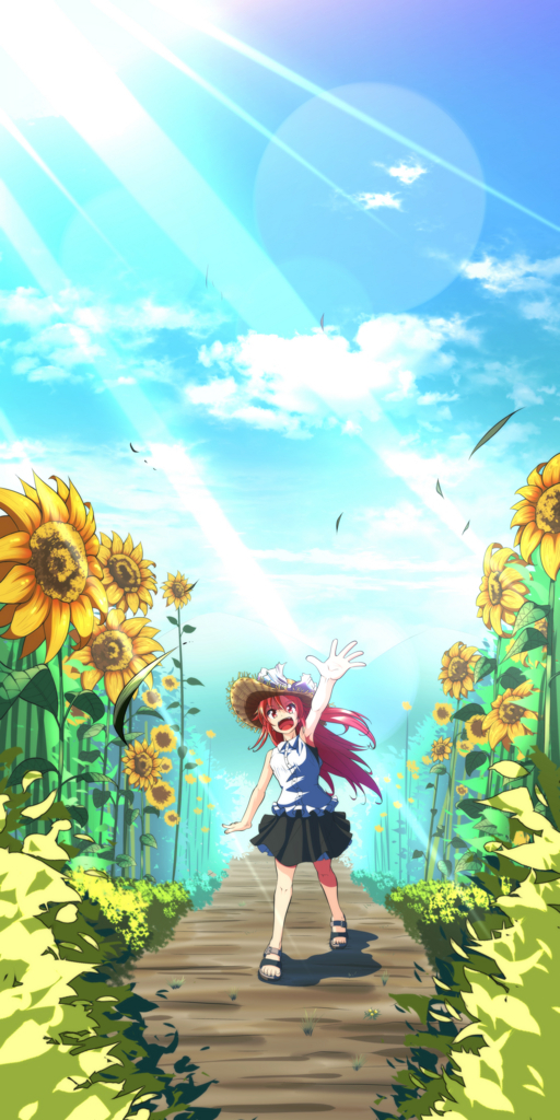 f:id:kabotyanokakasi:20170616190450j:plain