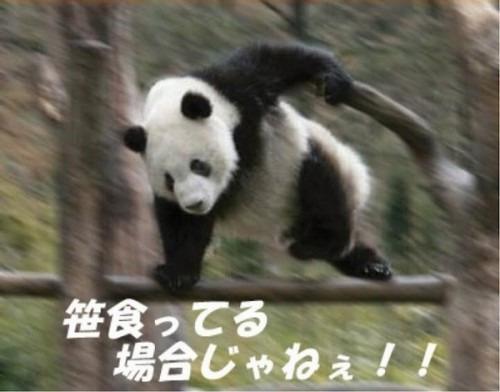 f:id:kabu_ohimesama:20200520223447j:plain
