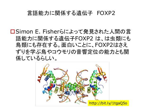 f:id:kabukawa:20190409020928p:plain:w500