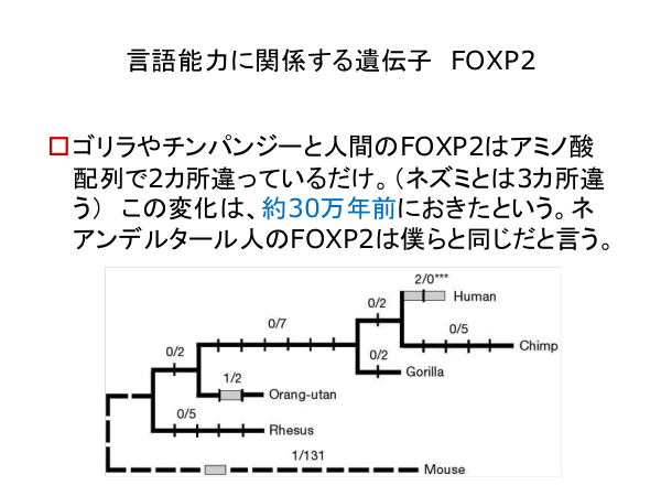 f:id:kabukawa:20190409020958p:plain:w500