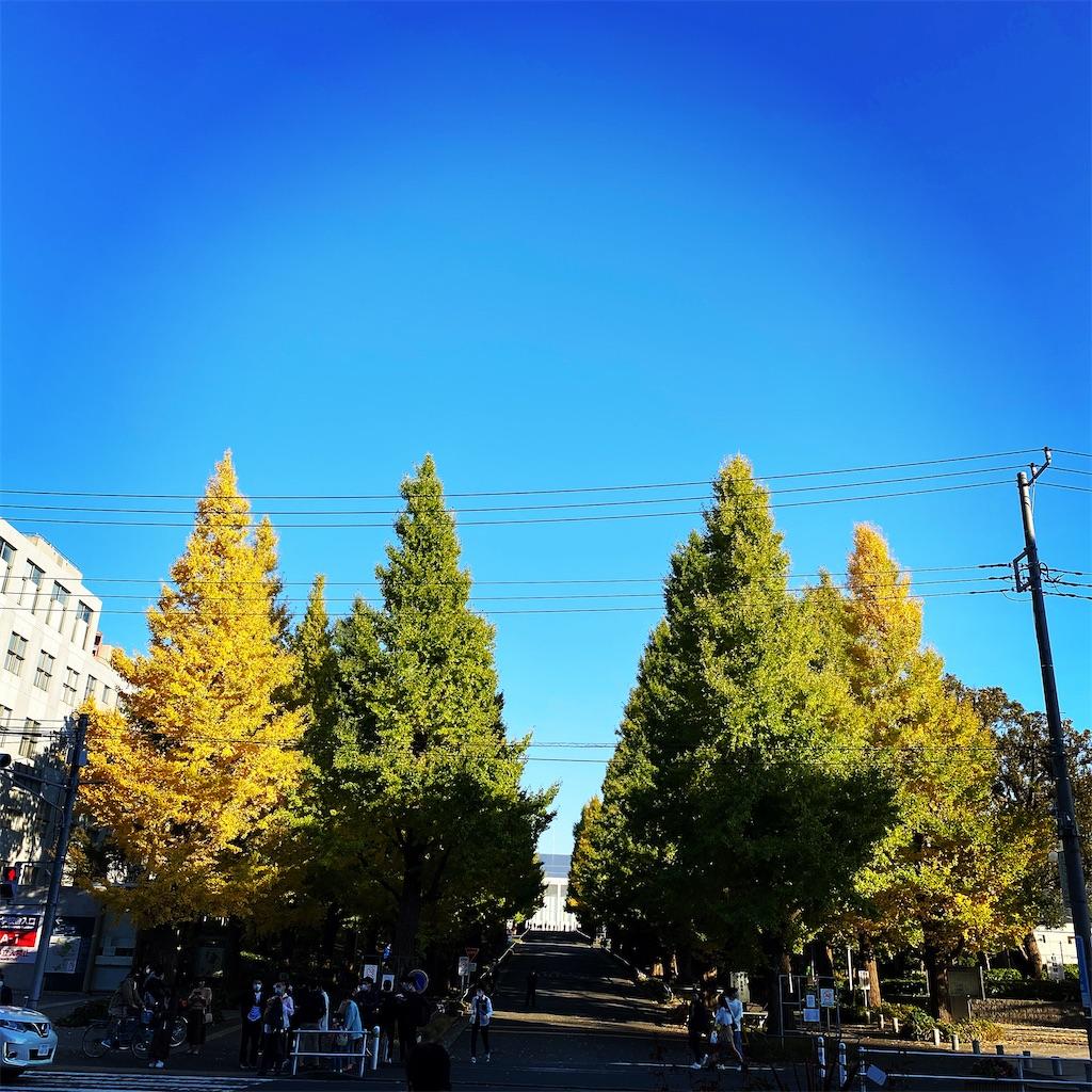 f:id:kabukimitsuo:20201120134445j:image