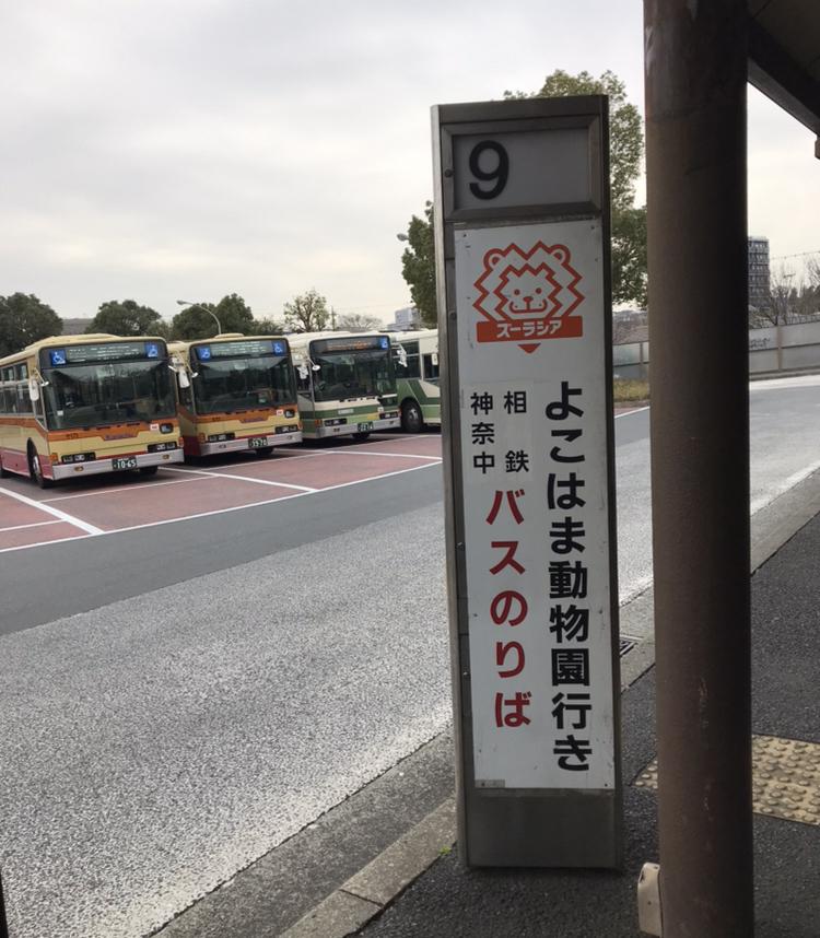 f:id:kabukimonoo:20190424223115j:plain