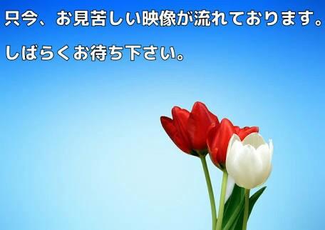 f:id:kabunyan1342:20170607220850j:image
