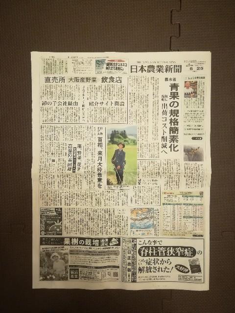 f:id:kaburamai:20170625233852j:image
