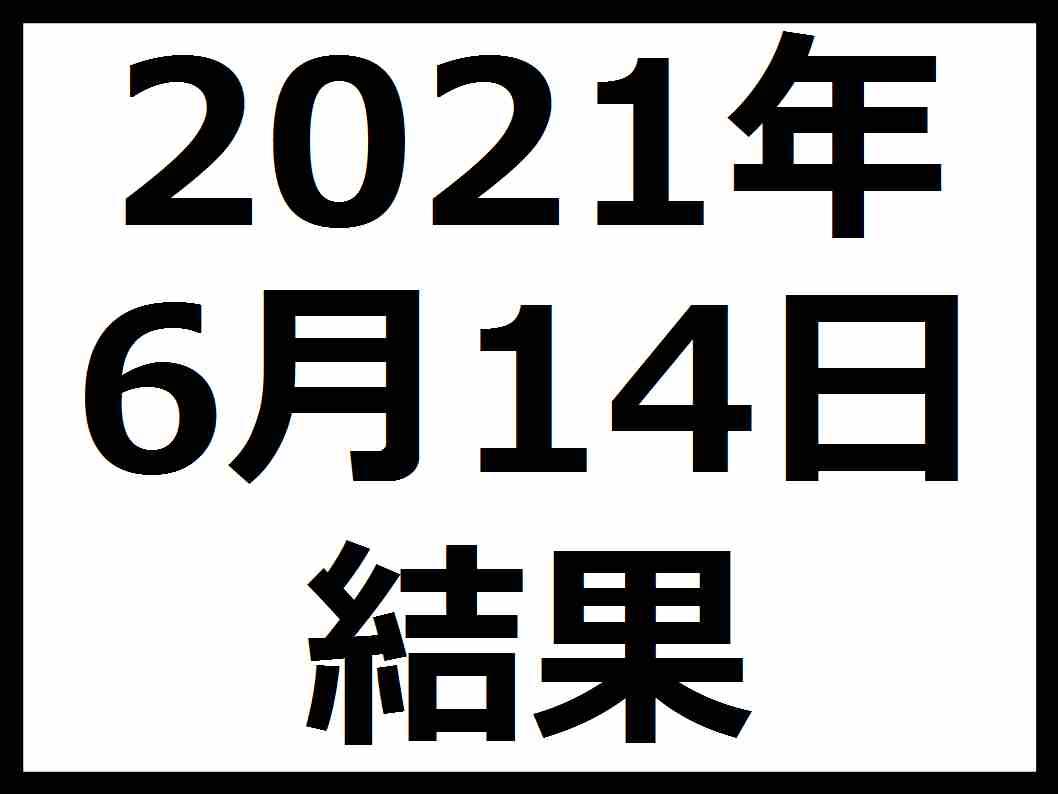 f:id:kaburieru:20210612082900j:plain