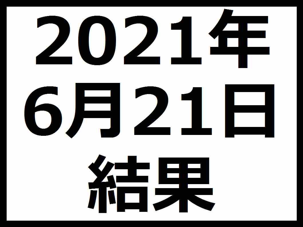 f:id:kaburieru:20210620005646j:plain