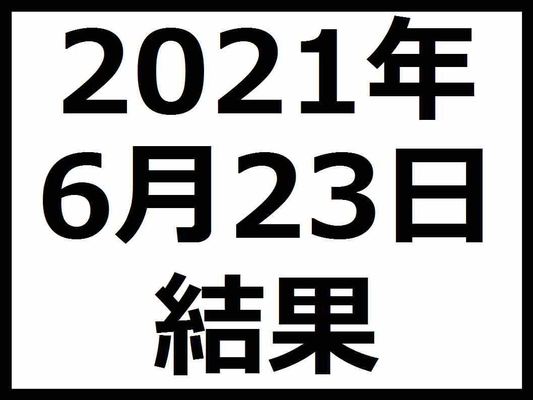 f:id:kaburieru:20210623074114j:plain