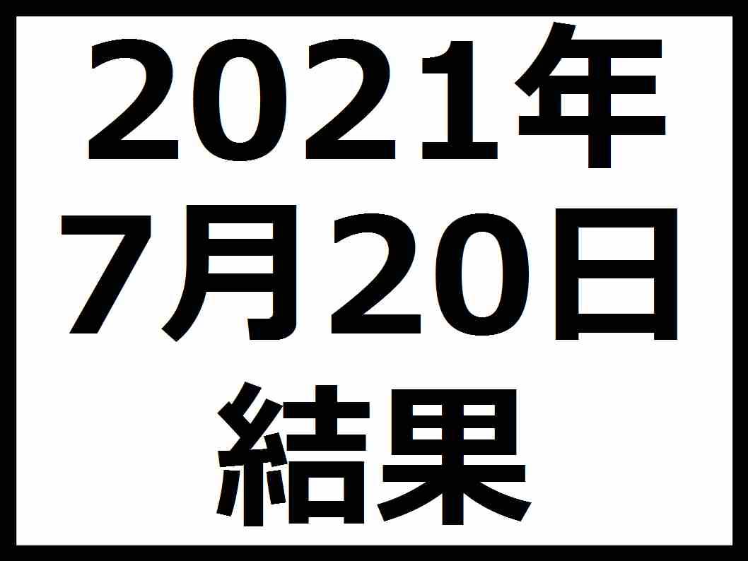 f:id:kaburieru:20210720073732j:plain