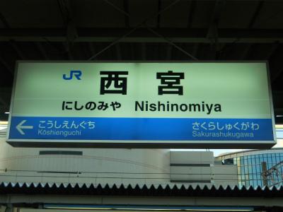 f:id:kabutoyama-tigers:20120108163629j:image