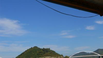 f:id:kabutoyama-tigers:20120125194730j:image