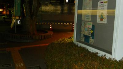 f:id:kabutoyama-tigers:20120128085038j:image