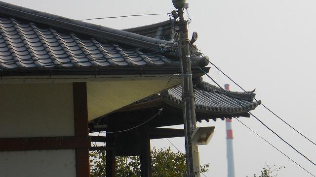 f:id:kabutoyama-tigers:20120129123717j:image