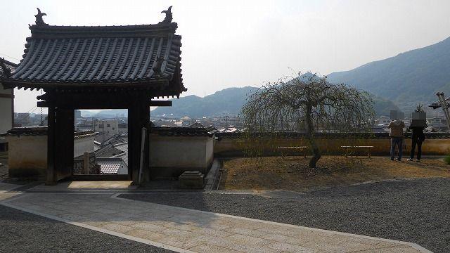 f:id:kabutoyama-tigers:20120129124637j:image