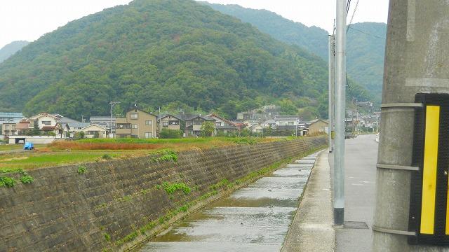 f:id:kabutoyama-tigers:20120131193633j:image