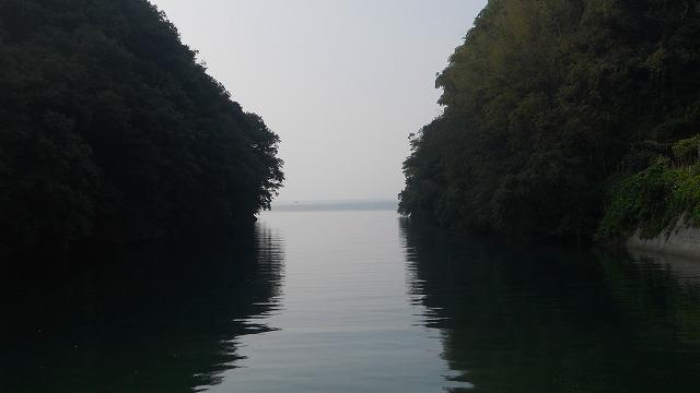 f:id:kabutoyama-tigers:20120131194436j:image