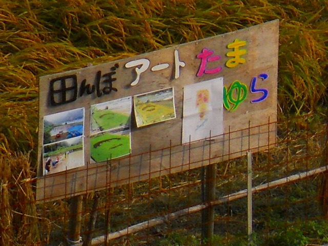 f:id:kabutoyama-tigers:20120131200229j:image