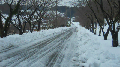 f:id:kabutoyama-tigers:20120205152651j:image